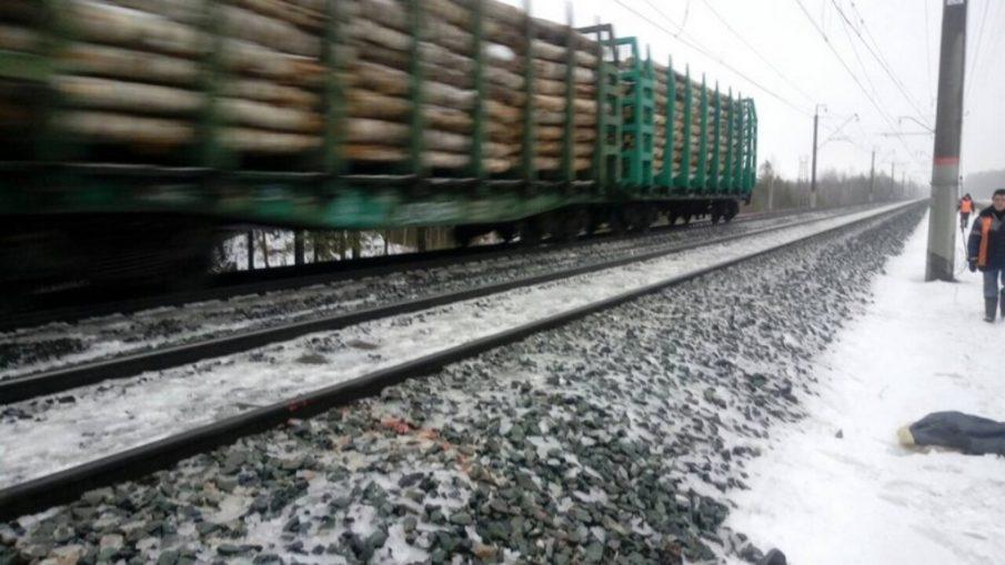 под колесами поезда погибла женщина