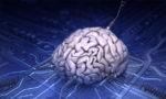 Японцы создали аналоговый процессор, работающий на принципах функционирования головного мозга