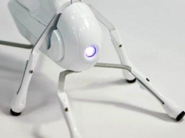 роботы и умные устройства