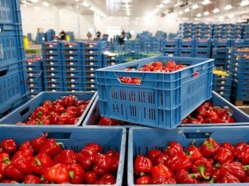 Экспорт украинской продукции