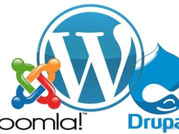 создание и обслуживание сайта
